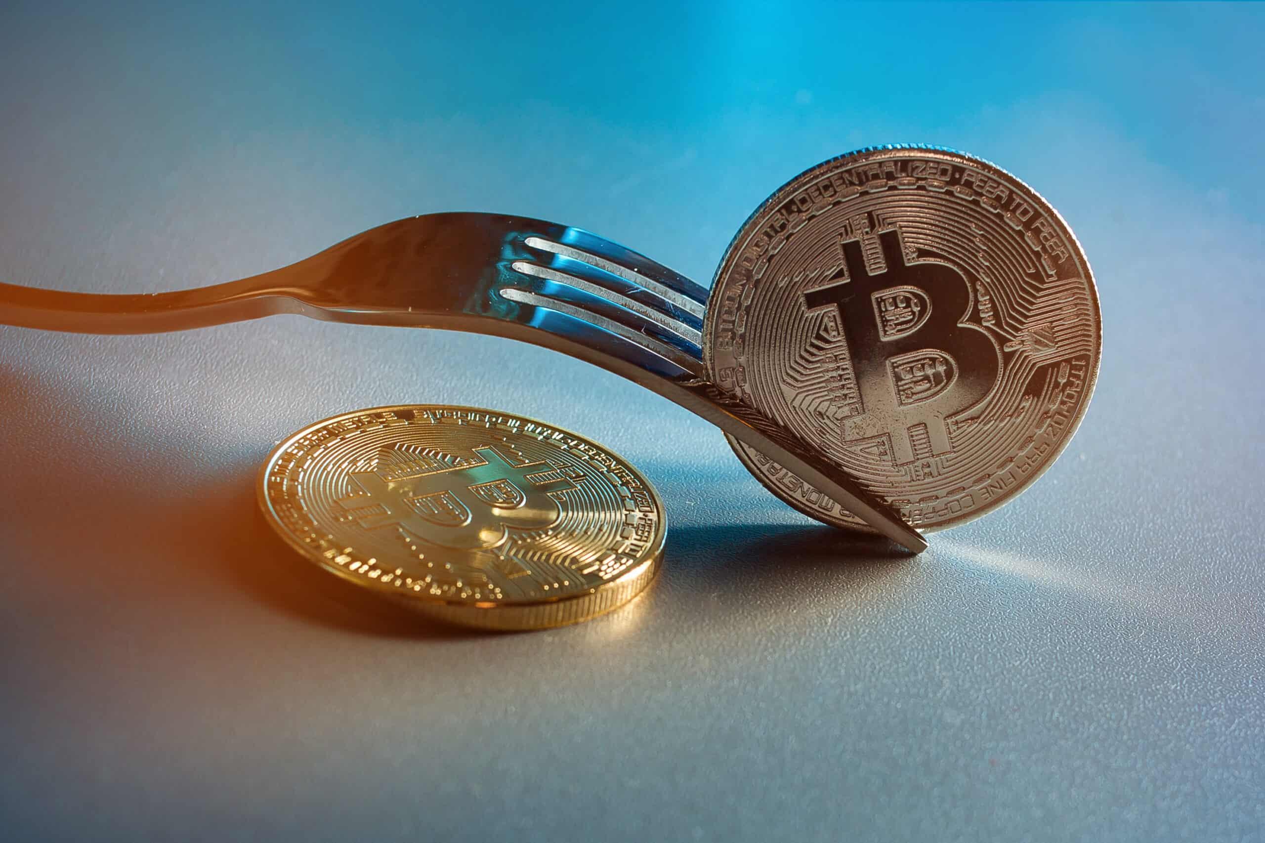 Fork mit Münze