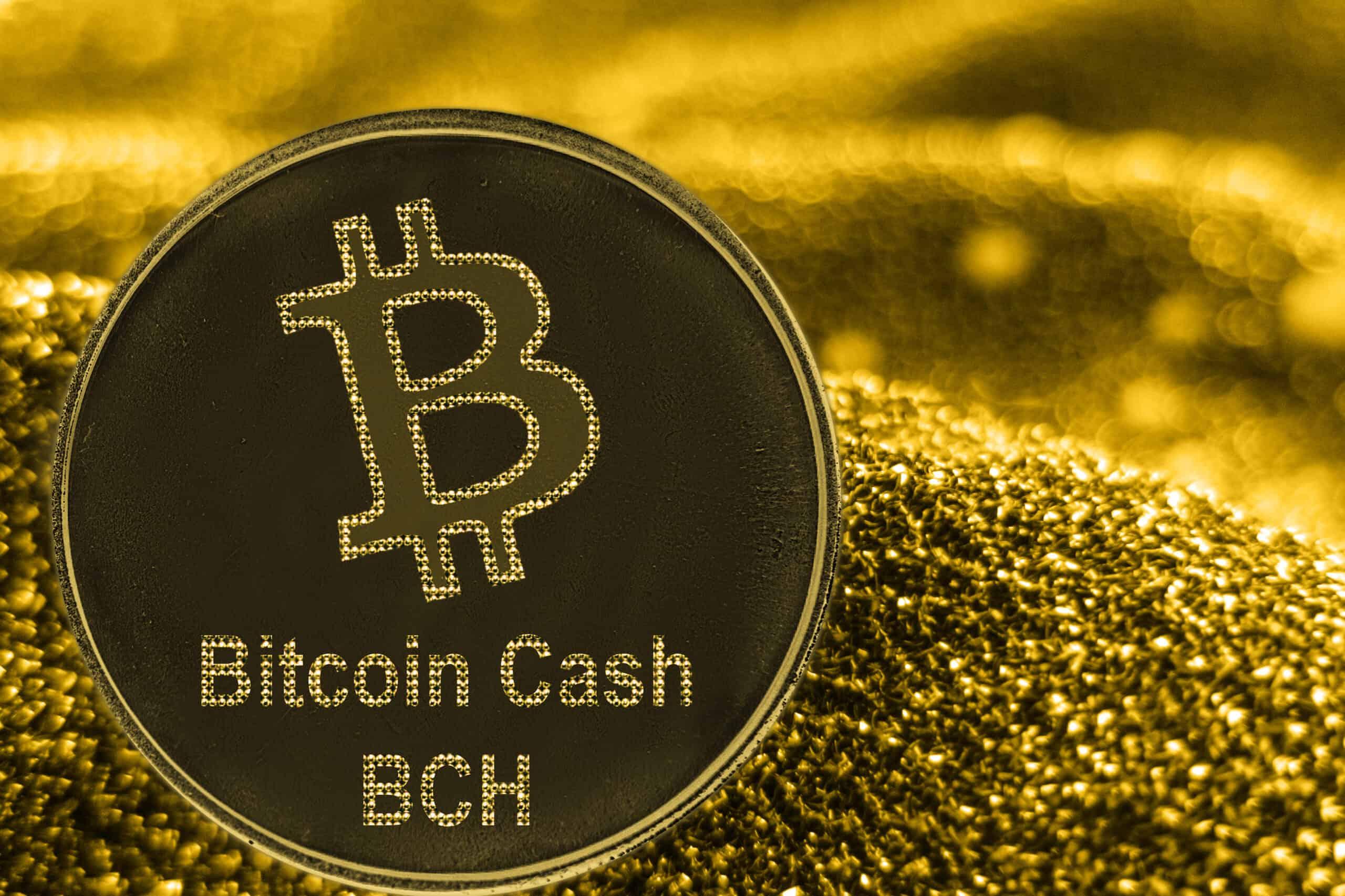 Bitcoin Cash Münze