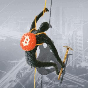 Wallclimber: #Bitcoin-Miner