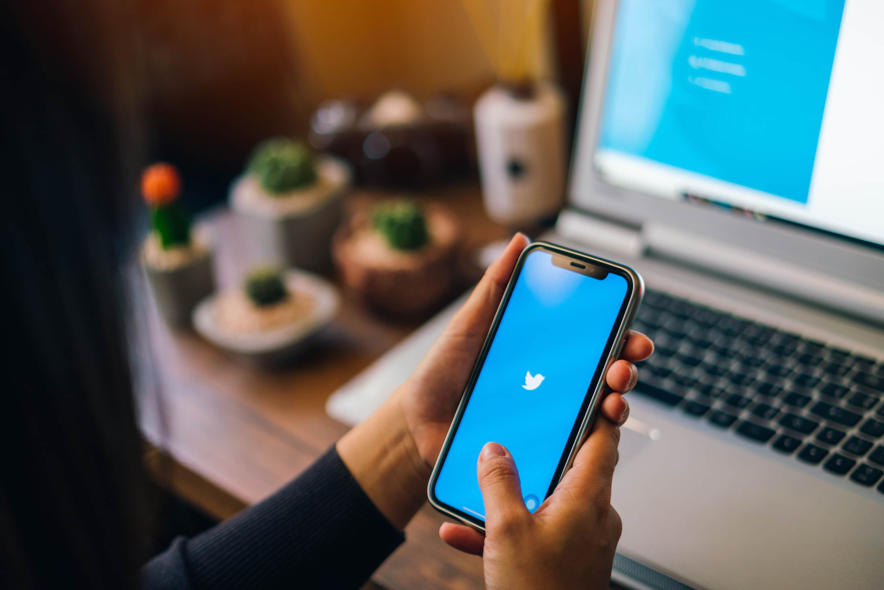 Twitter, Twitter löscht massenhaft Scam-Accounts