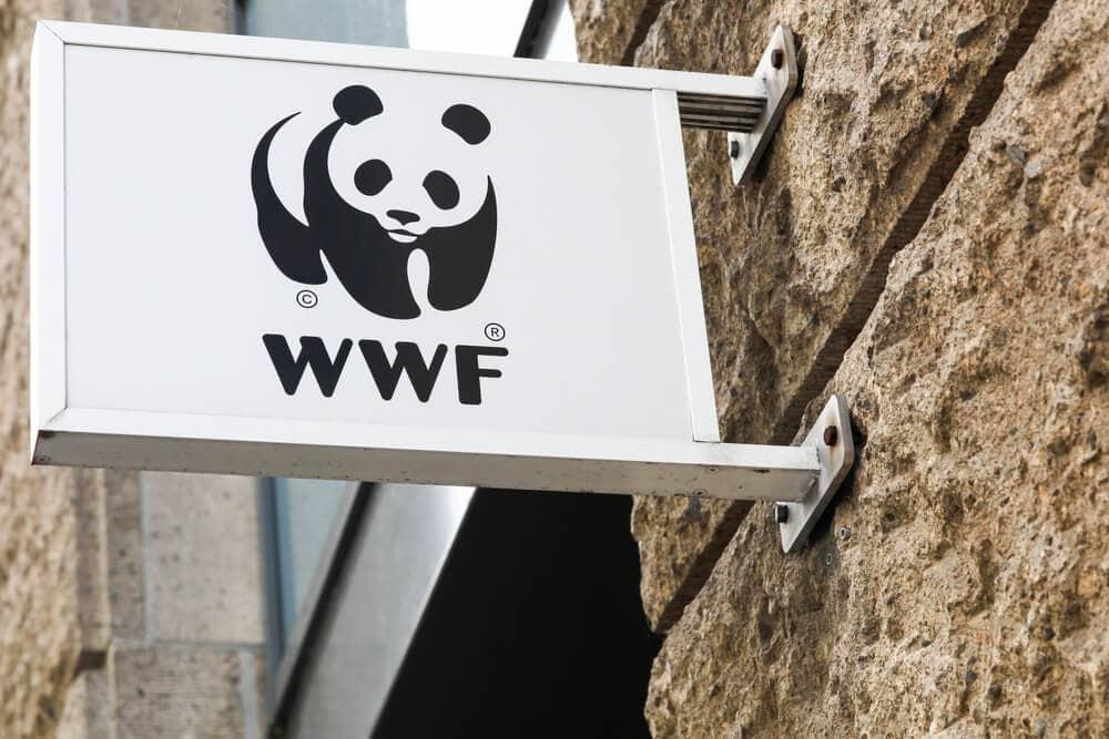 OpenSC: Mehr Transparenz im Konsum? WWF und BCG machens möglich