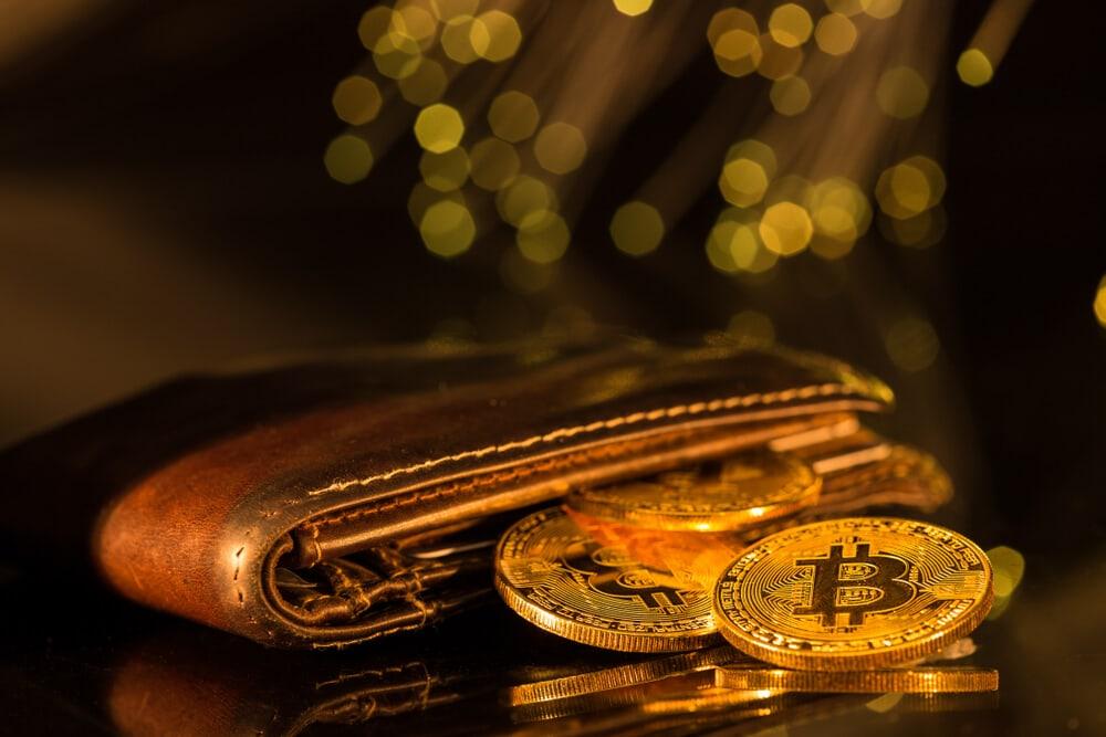 Der Hodl-Guide: 5 Arten von Bitcoin Wallets, die du kennen solltest