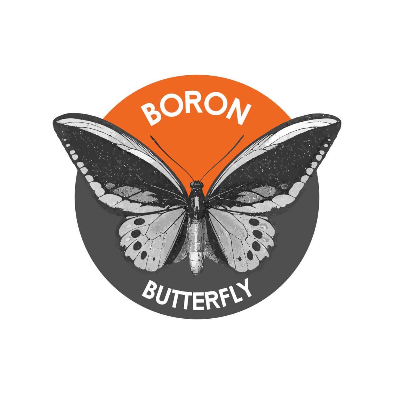 Monero, Monero Hard Fork: Boron Butterfly fliegt ASICs davon