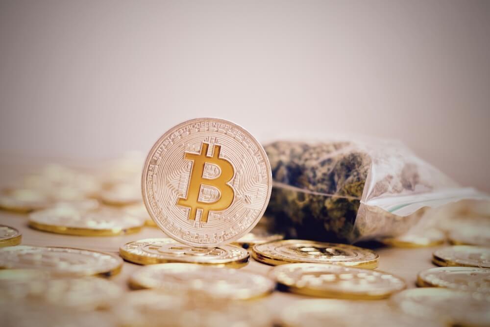 Keine Coins für Cannabis: HSBC verweigert Kauf von Bitcoin und friert Konto ein