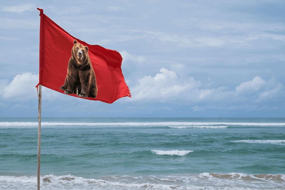 Bitcoin-kurs: Bärenflagge gesichtet