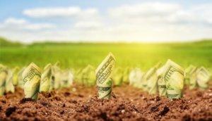 Bitcoins Wachstum Spieltheorie