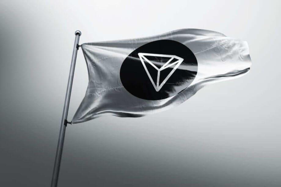 Flagge mit TRON-Logo in Schwarzweiß