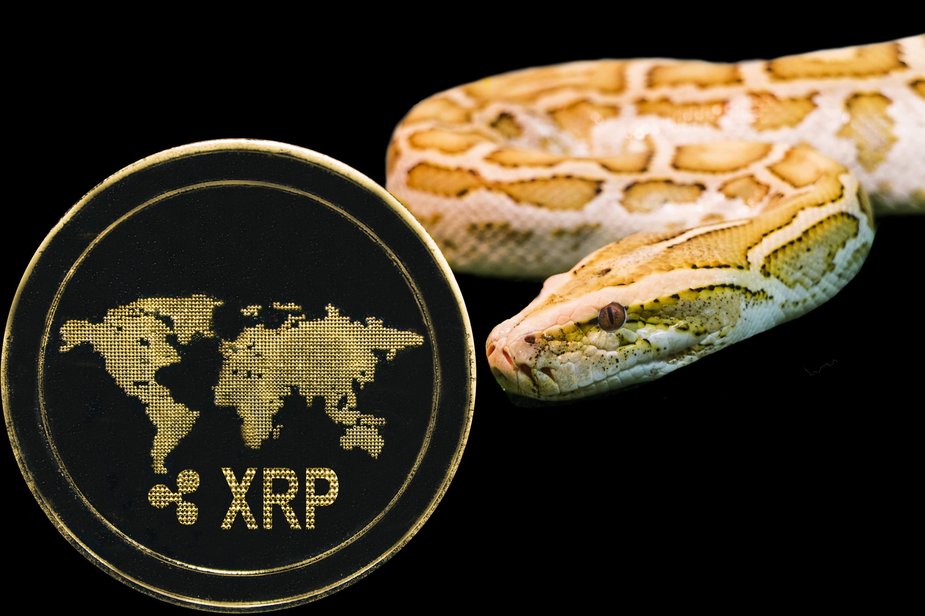 Ripple, Ripple investiert in größte Bitcoin-Börse Mexikos