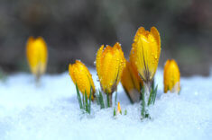 Bitcoin: Eiszeit oder neuer Frühling