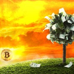 """""""Nur Bitcoin hat jetzt eine Daseinsberechtigung"""" – Das Meinungs-ECHO"""
