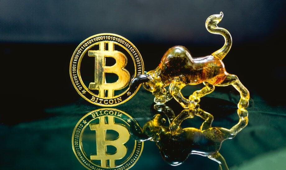 Ein goldenes Bitcoinsymbol, das von einem goldenen Stier aus Glas mit den Hörnern berührt wird als Symbol für den steigenden Bitcoin-Kurs