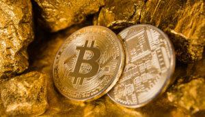 Zwei Bitcoin Münzen, eine von vorne, die andere von hinten, inmitten von einigen Goldnuggets, symbol für potential des Bitcoin-Kurs