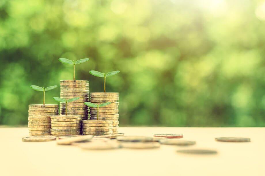 Mehre Stapel an goldenen Münzen mit ein paar kleinen Pflanzen und grünem Hintergrund
