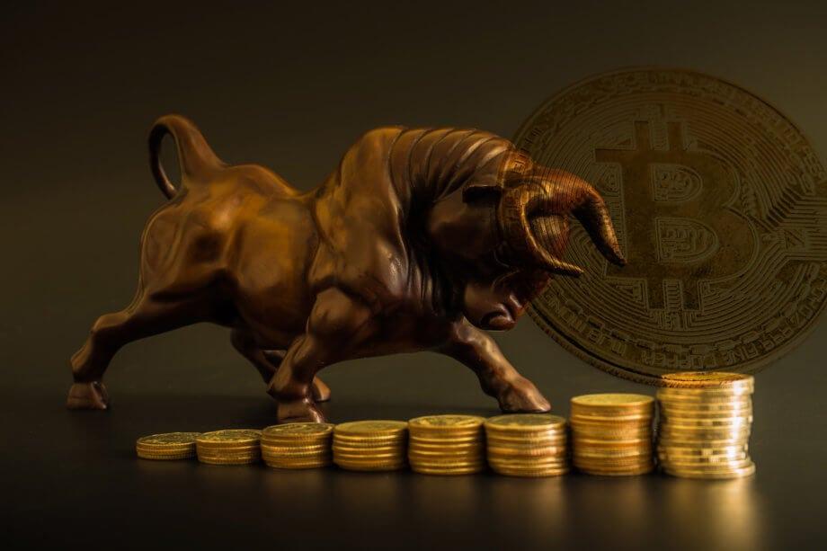 ein bulle, der auf bitcoin-münzen nach oben läuft als symbol für den steigenden bitcoi-kurs. bulle in braun, münzen in gold, im hintergrund das btc-symbol