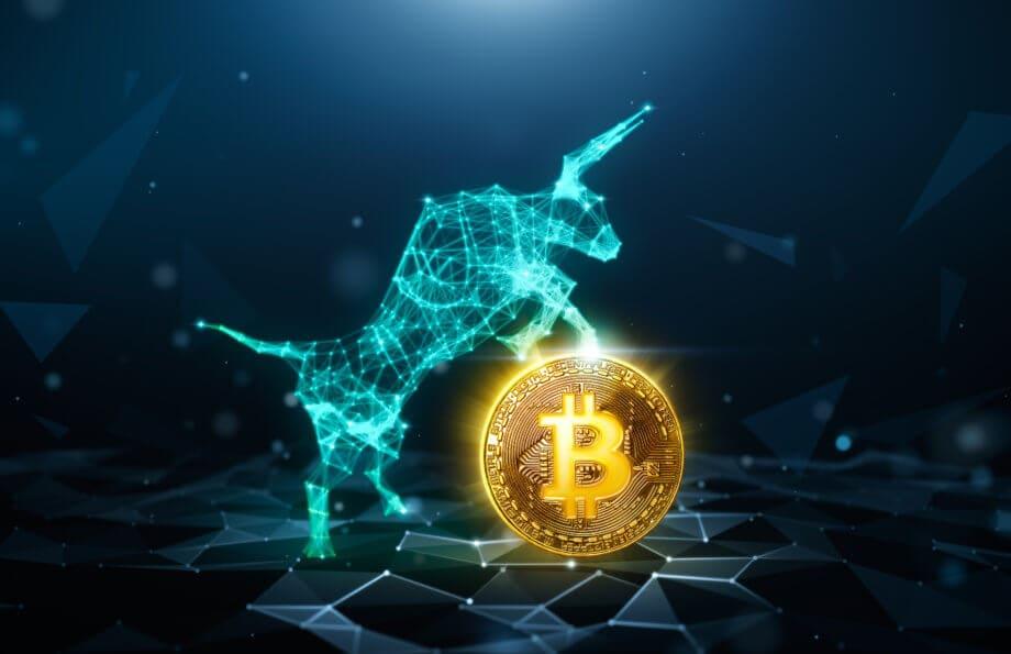 Ein Bulle aus Polygonen, der auf einer Bitcoin Münze sitzt als Symbol für den bullishen Bitcoin-Kurs