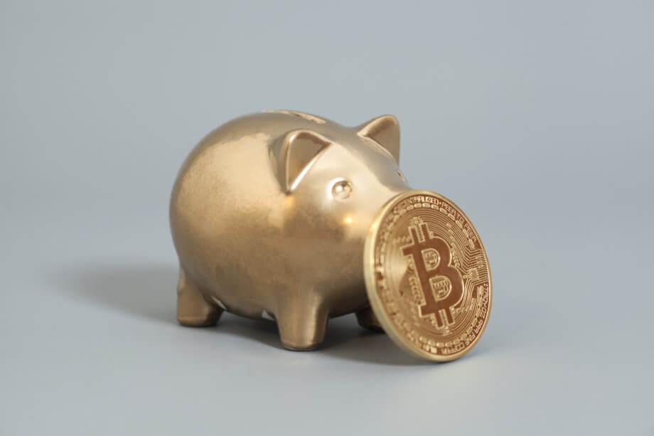 ein goldenes sparschwein, vor dessen schnauze eine bitcoin münze steht vor einem grauen hintergrund