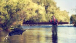 ein angler, der einen fisch aus dem wasser zieht