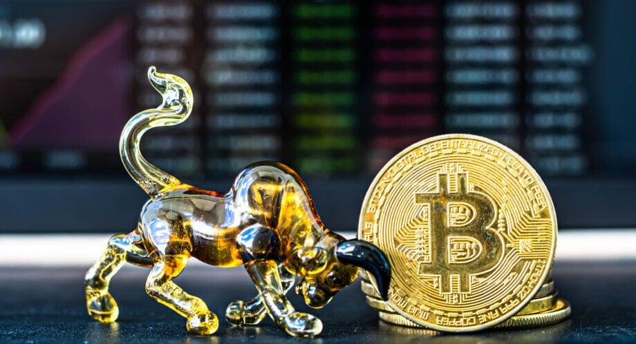 ein bulle, der eine bitcoin münze auf die hörner nimmt