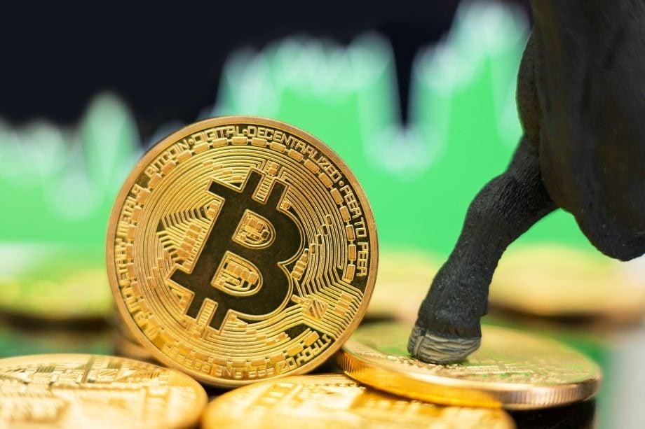 Bulle steht mit Hufe auf Bitcoin Muenze