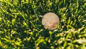 eine bitcoin-münze auf einer grünen wiese