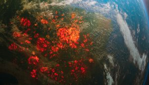 Grafik die einen Brand des Amazonas-Regenwalds aus dem Weltraum betrachtet illustriert