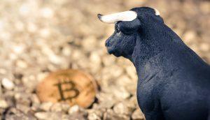 Bullen-Figur blickt auf Bitcoin-Münze
