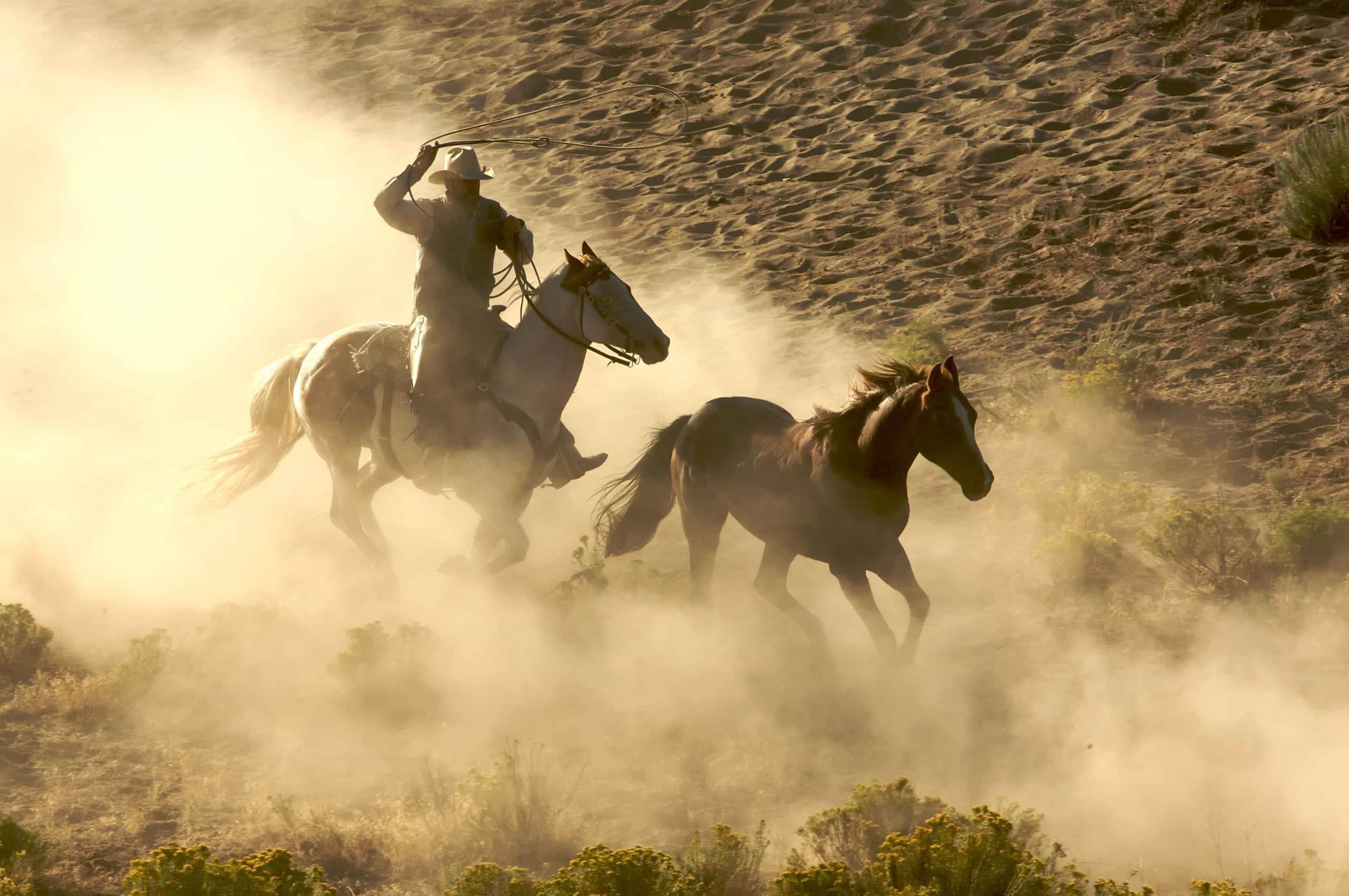 Cowboy reitet hinter Pferd