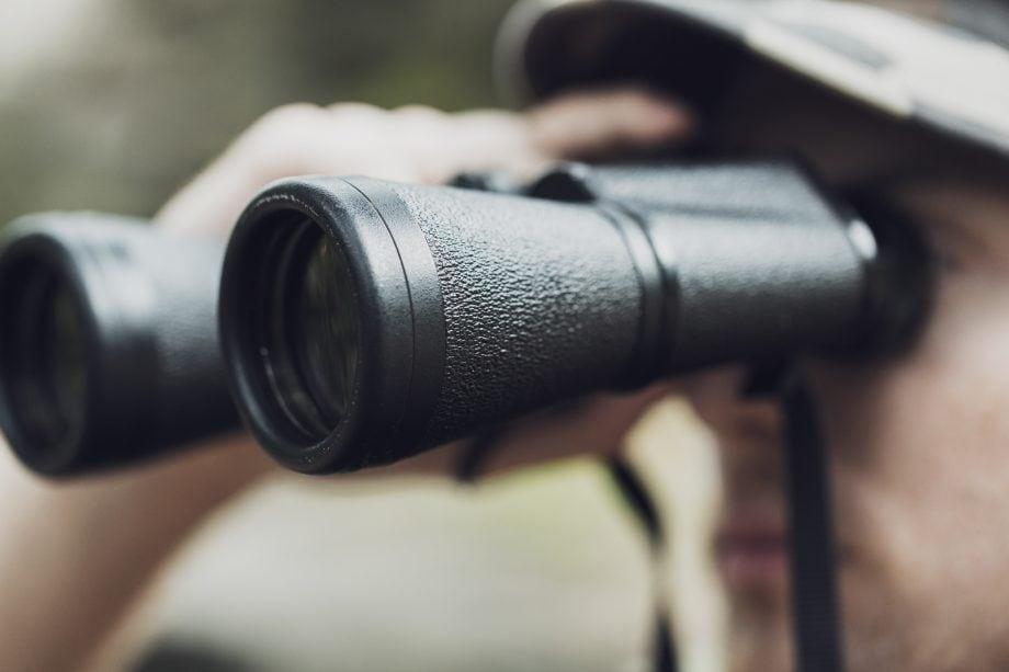 Person mit Fernglas auf der Jagd