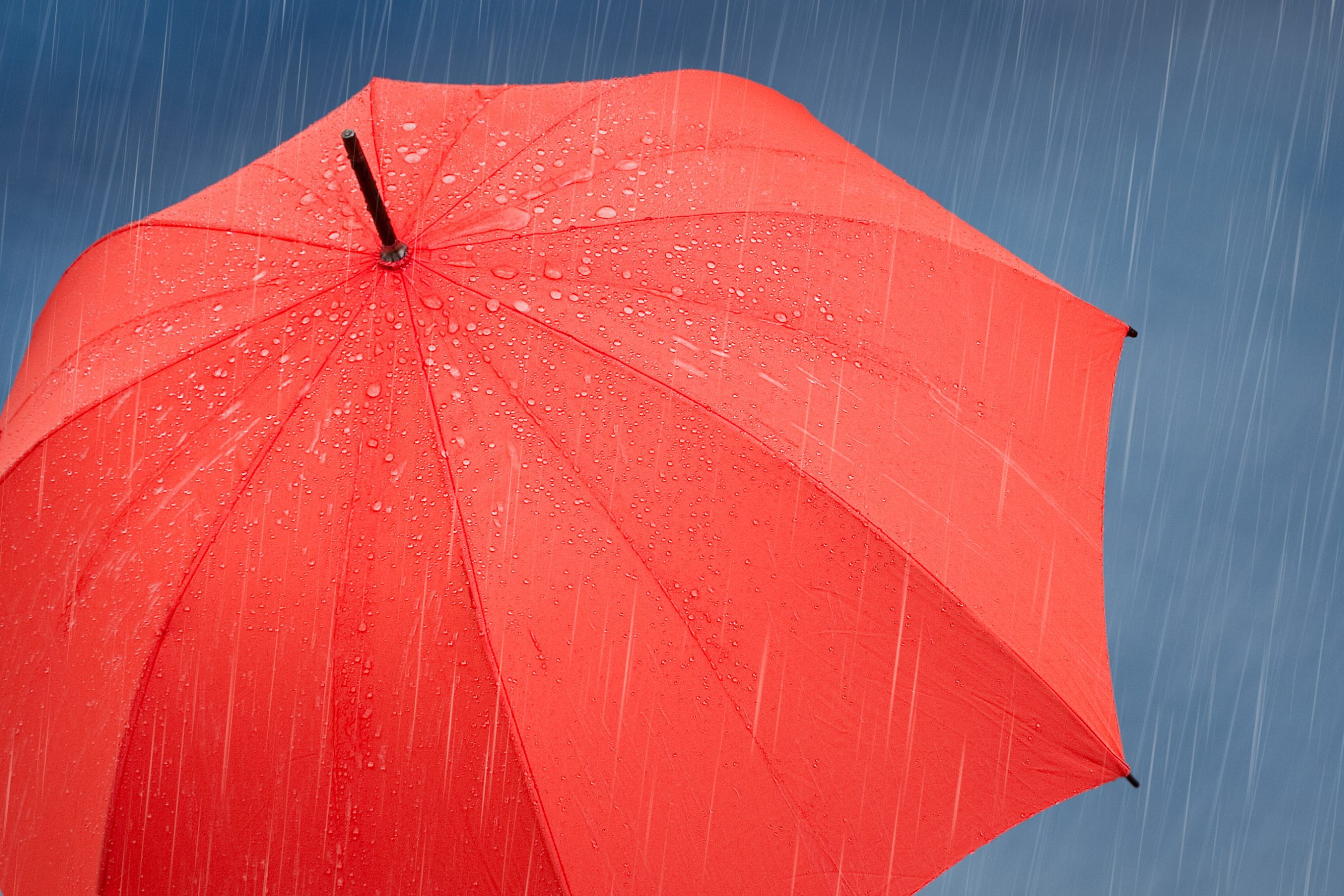 Roter Regenschirm unter Regenfall