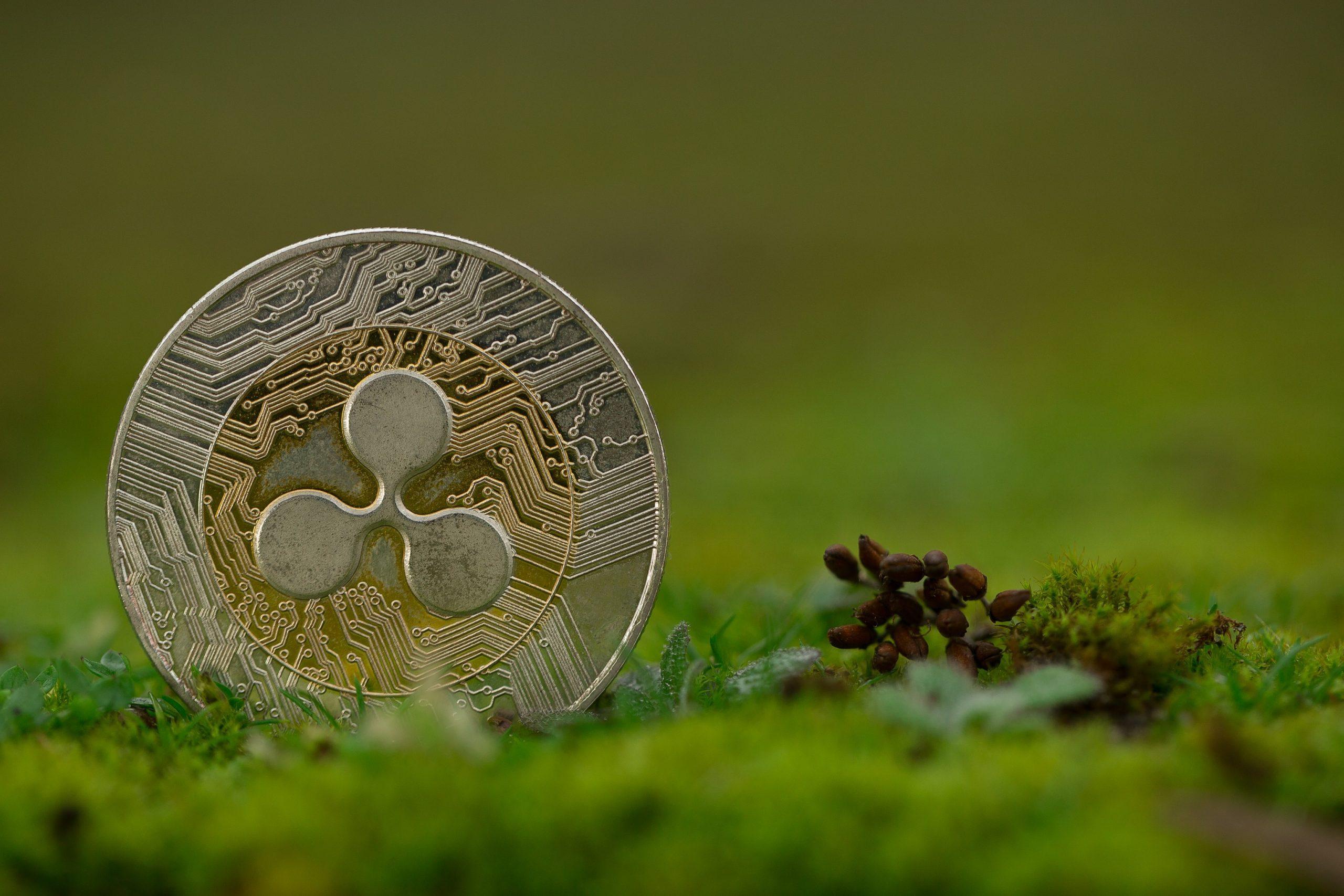 Nahaufnahme einer Ripple (XRP) Münze im Gras
