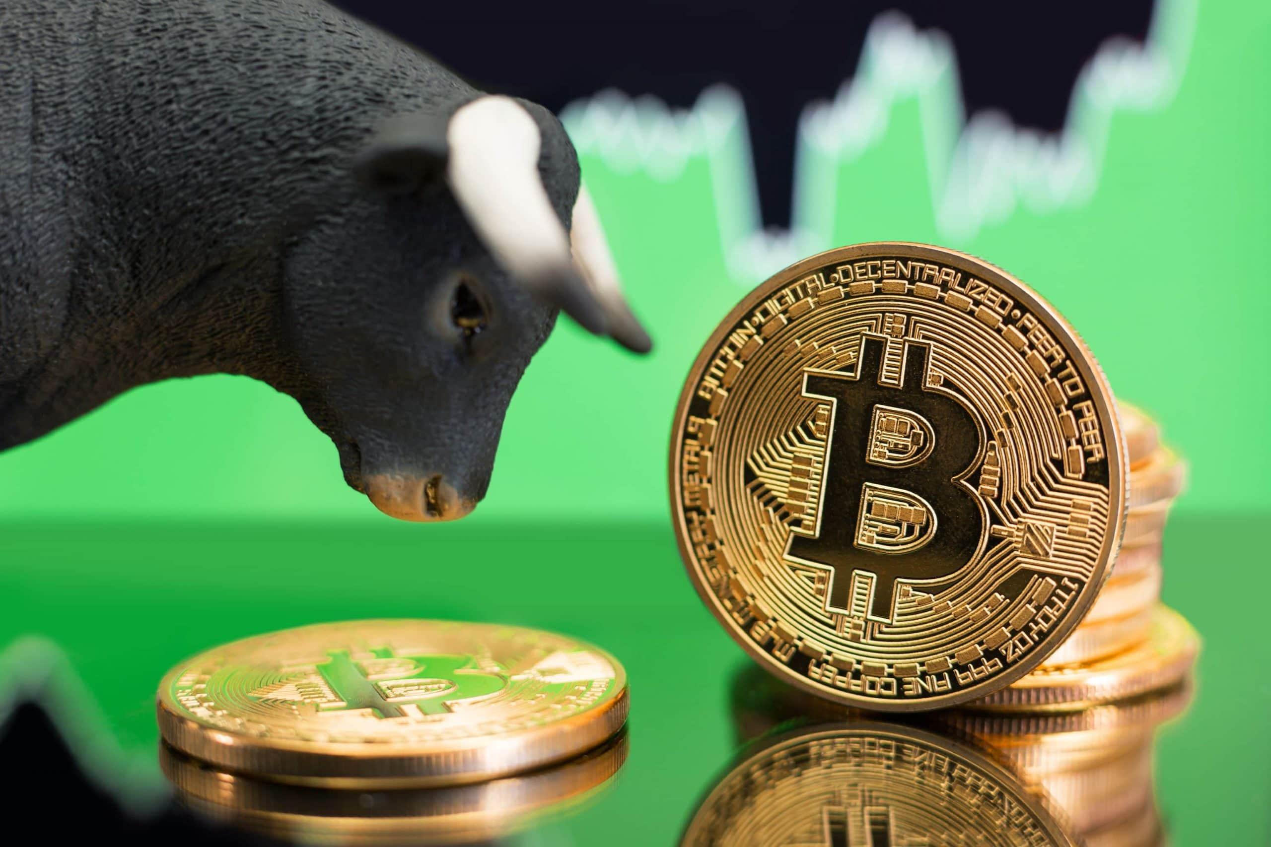 Bitcoin-Münzen und Bullen-Figur vor grünem Börsenchart
