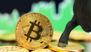 Bitcoin-Münze neben einem Bullen