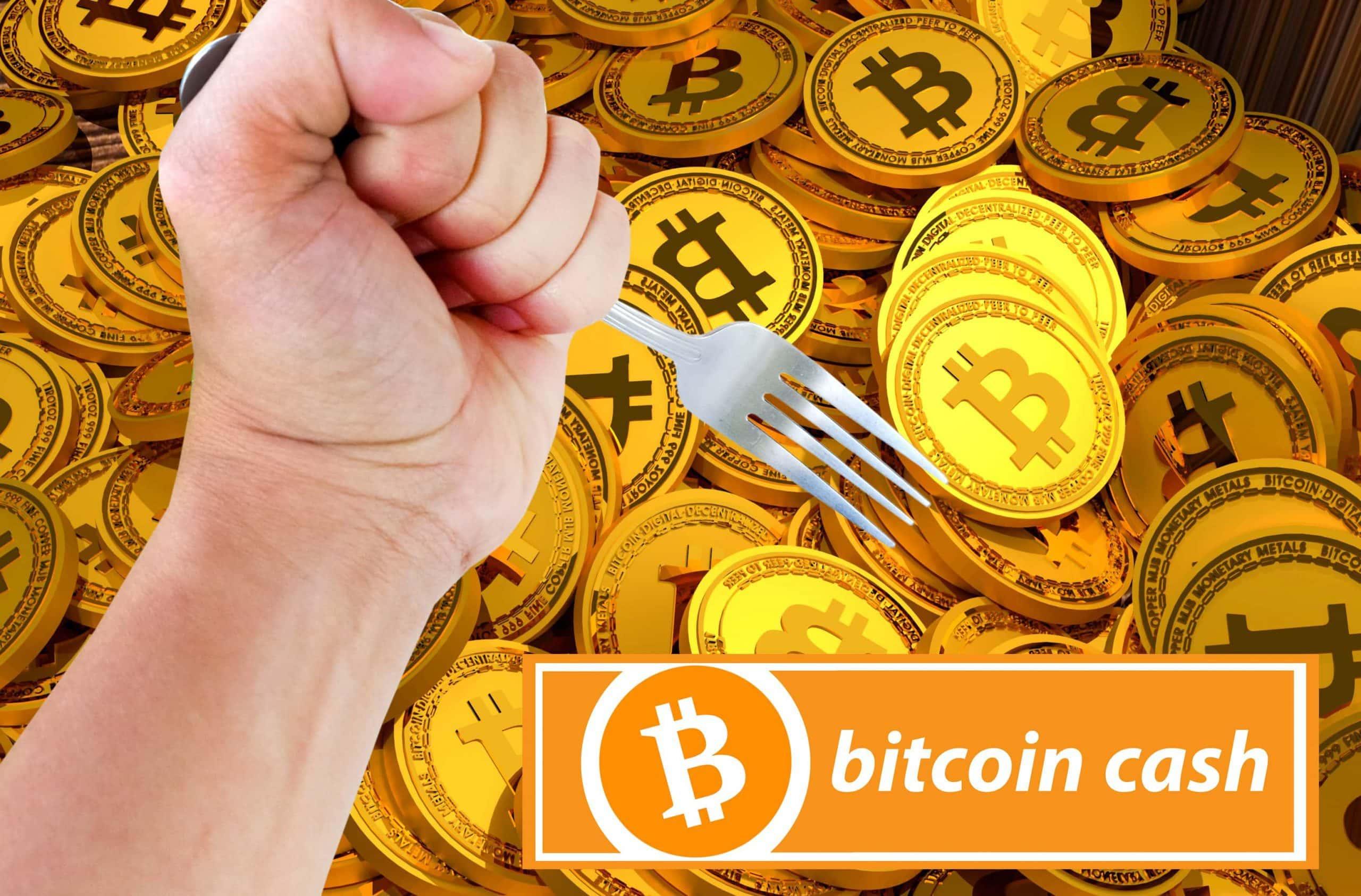 Hand die eine Gabel hält, im Hintergrund Bitcoin-Münzen, darunter der Schriftzug Bitcoin Cash