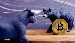 Eine Bullen-Figur und eine Bären-Figur mit Bitcoin-Münzestehen sich gegenüber,