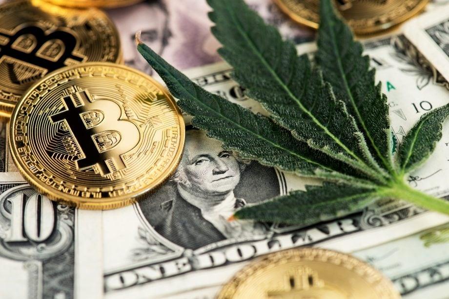 Ein Hanfblatt liegt neben mehreren Bitcoin auf einer zehn Dollarnote