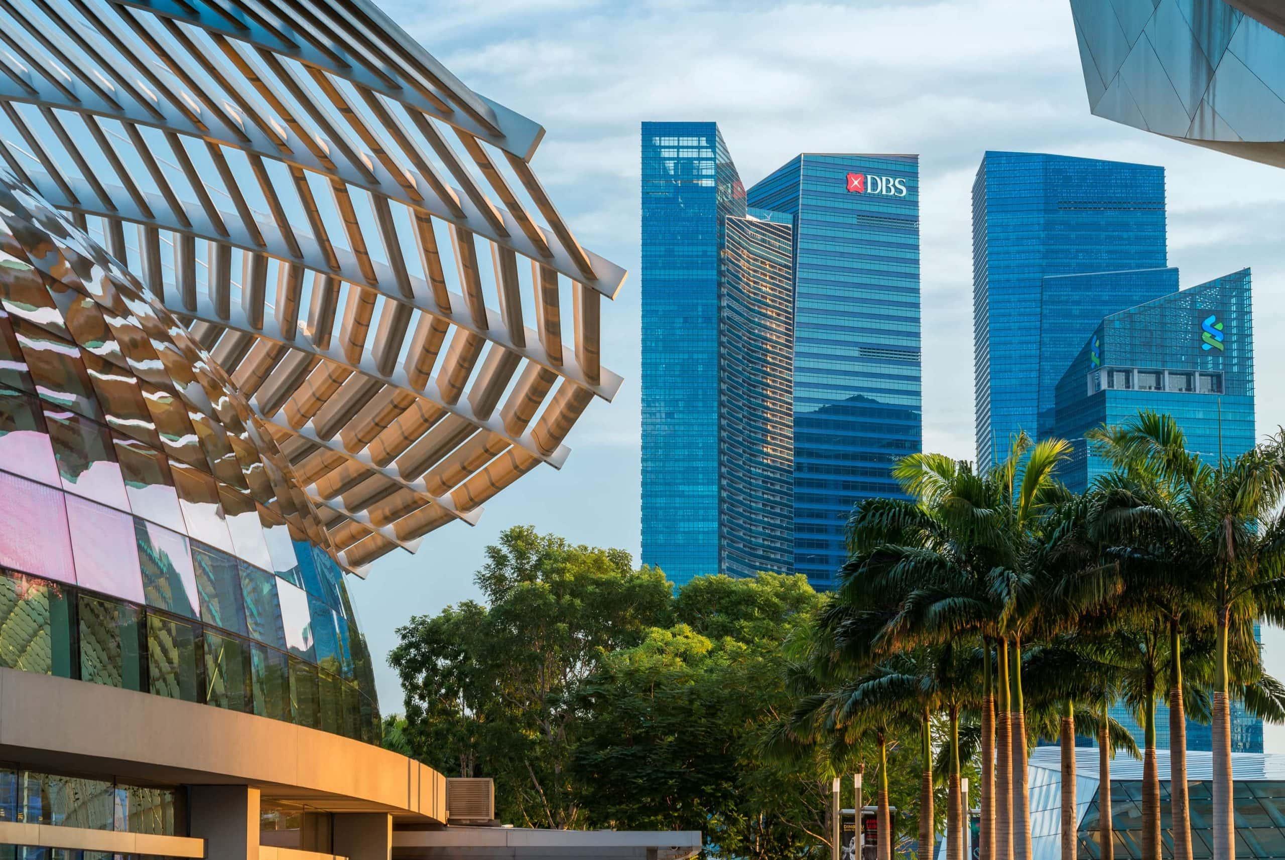 Man sieht eine Palmenallee. Am Horizont sind mehrere Wolkenkratzer, auf einem ist das DBS-Logo zu sehen.