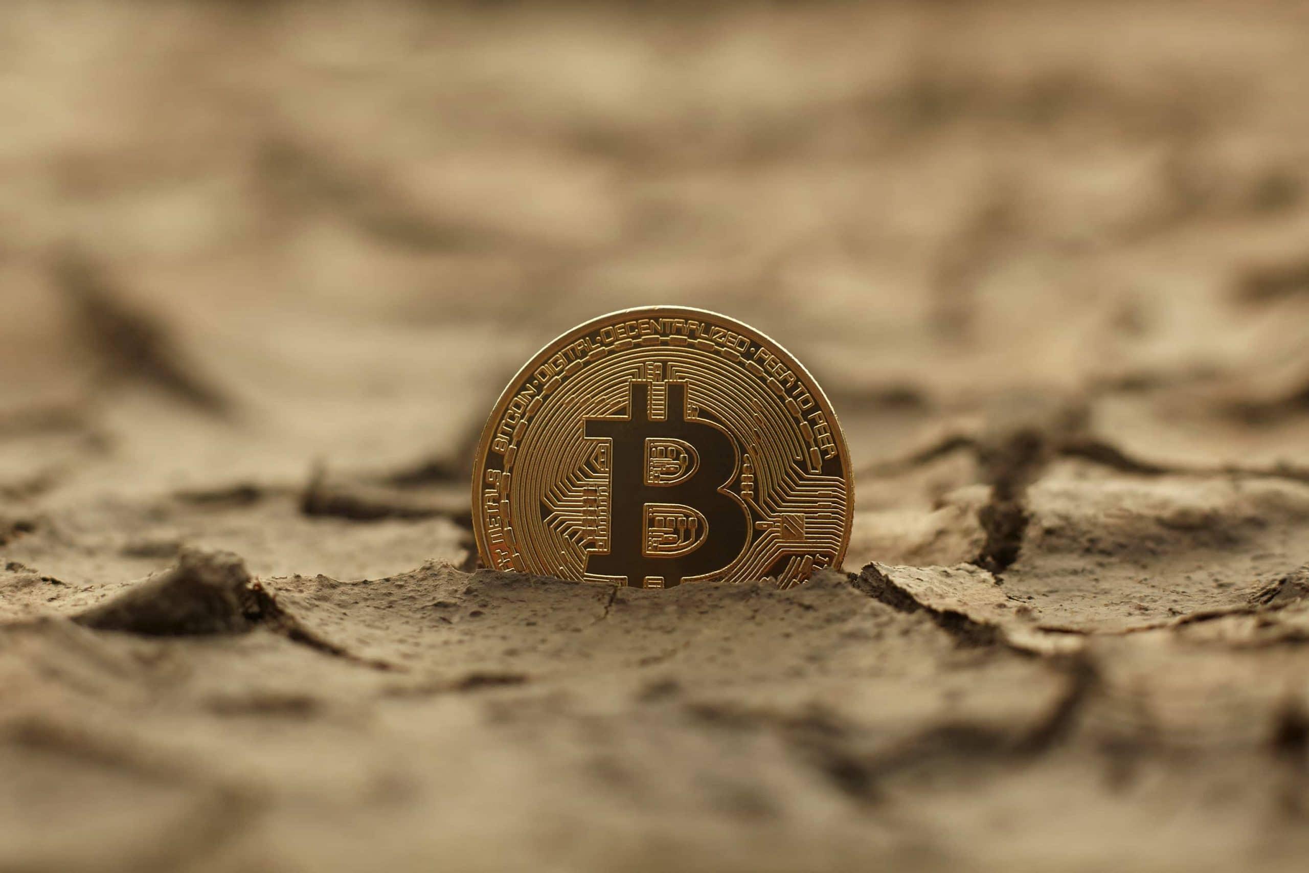 Eine Bitcoin-Münze ragt aus einem ausgetrockneten Boden