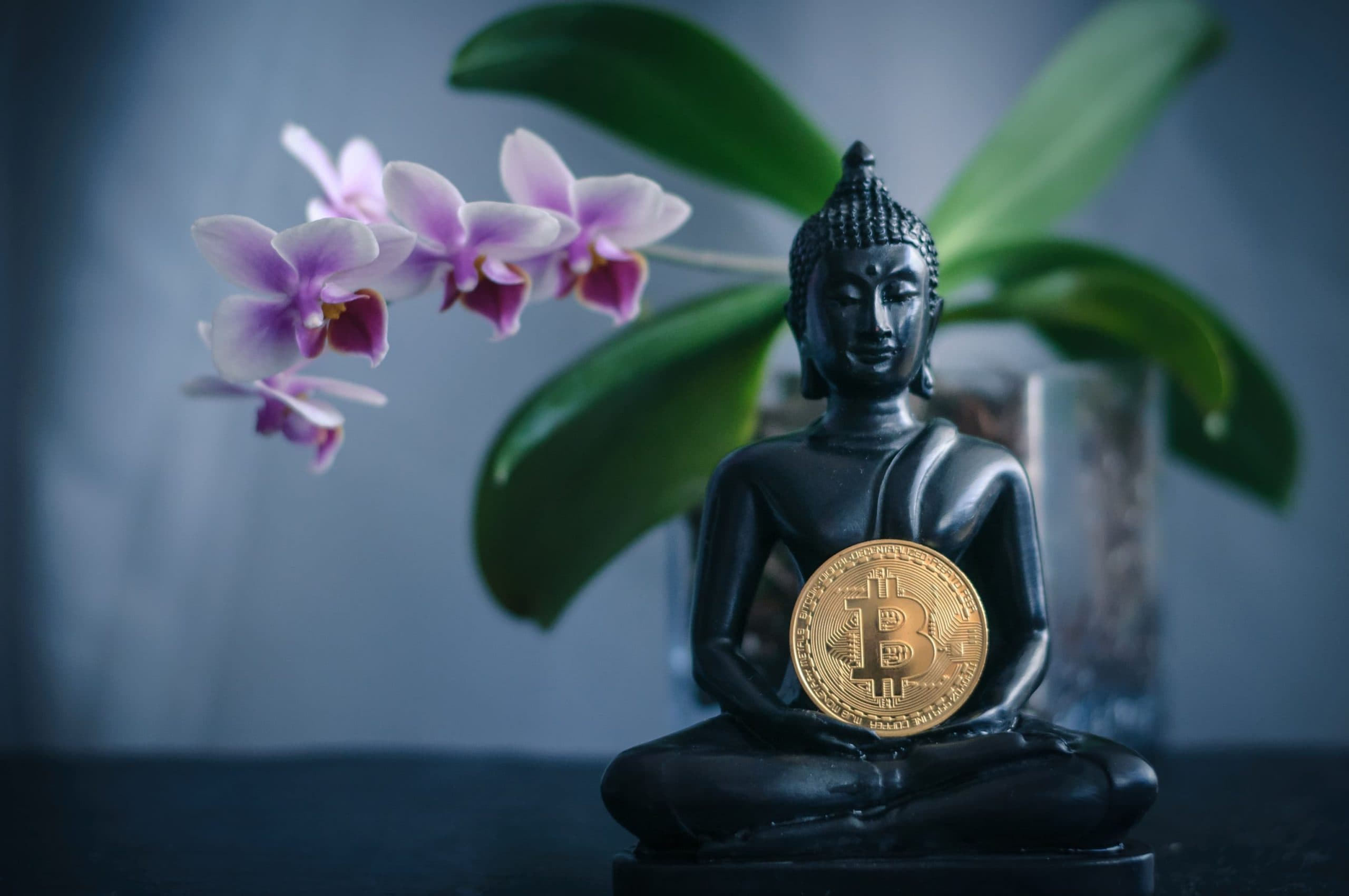 Eine Bitcoin-Münze im Schoß einer Buddha-Statue, im Hintergrund eine Orchidee