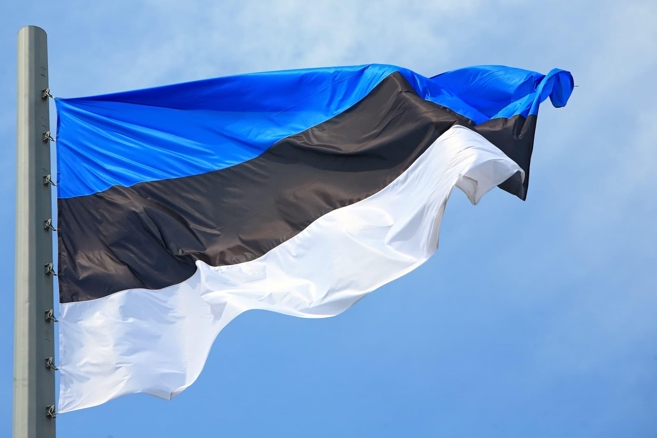 Estland-Flagge weht im Winde