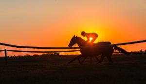 Bitcoin-Reiter auf seinem Pferd