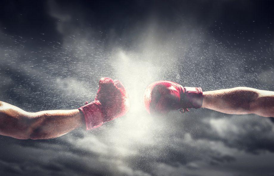 Zwei Boxer boxen.
