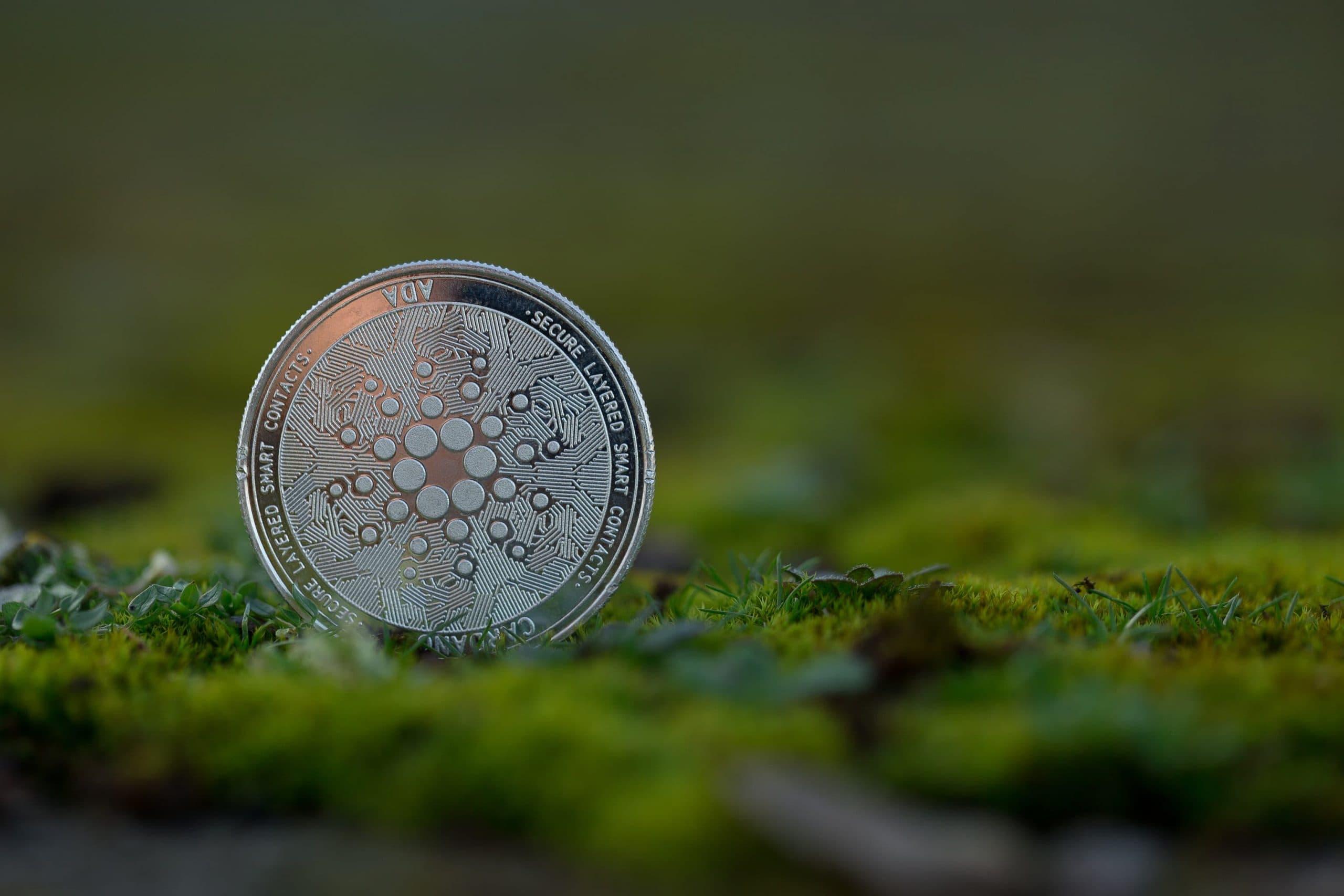 Cardano Münze