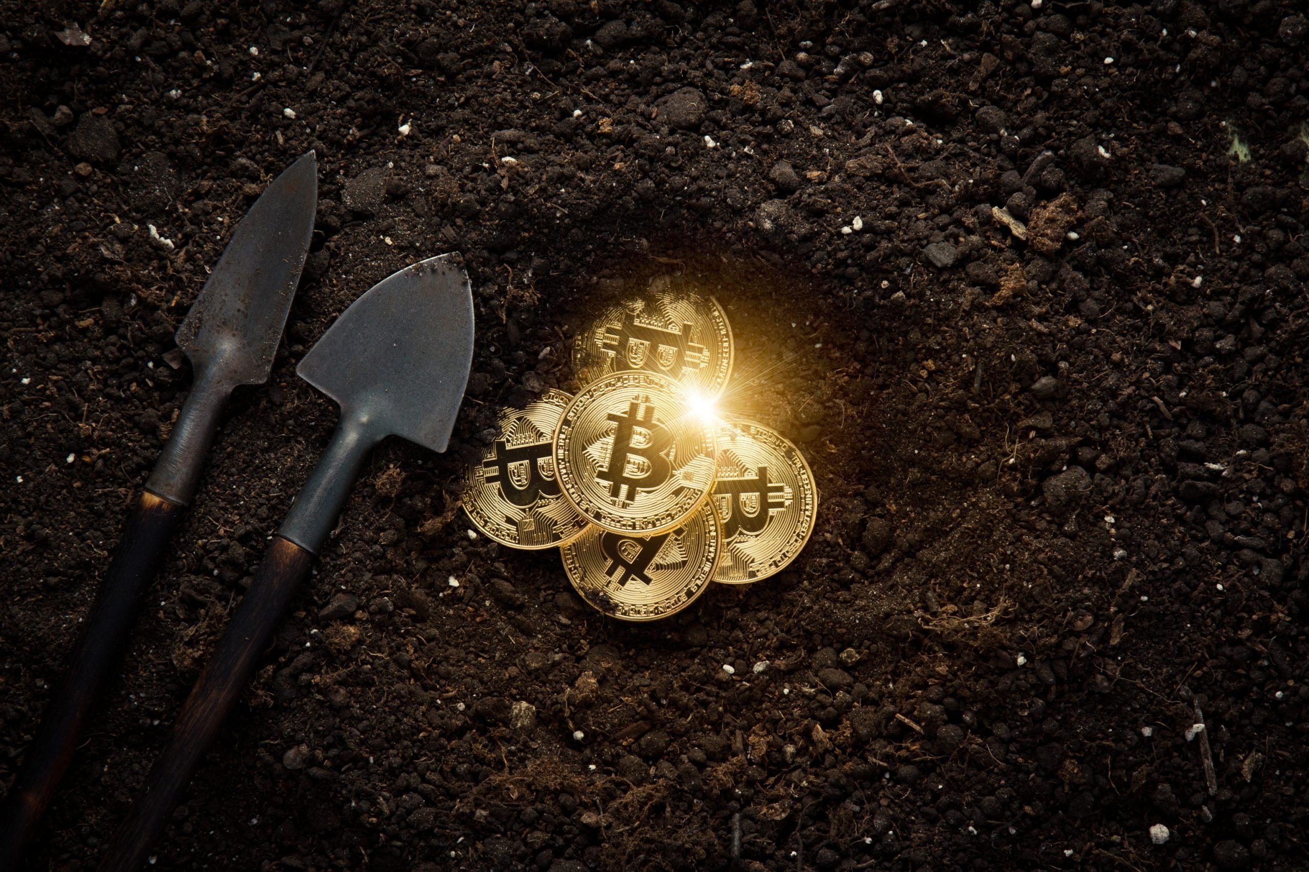 Zwei kleine Schaufeln liegen auf der Erde. Daneben ist ein gegrabenes Loch mit Bitcoin-Münzen.