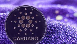 Cardano-Münze