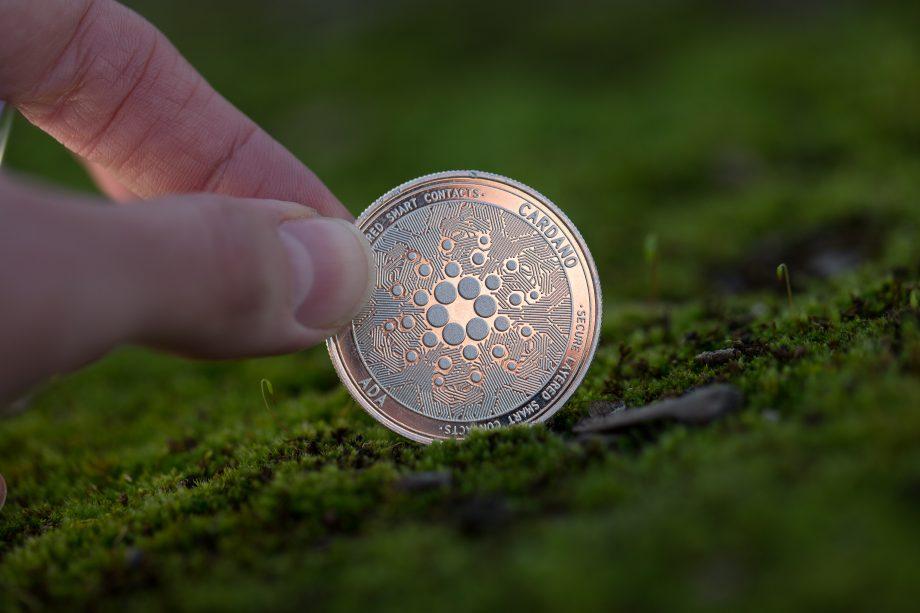 Hand greift nach Cardano-Münze auf Moos