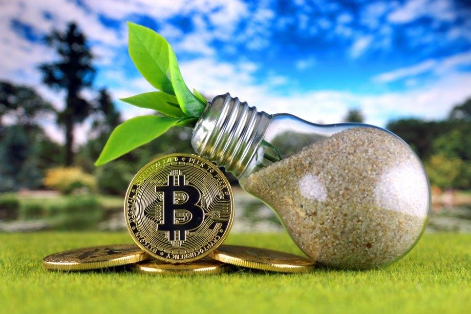 Bitcoinmünzen liegen auf einer Grasfläche, daneben ist eine Glühbirne mit Sand gefüllt, aus der ein kleiner Setzling wächst.