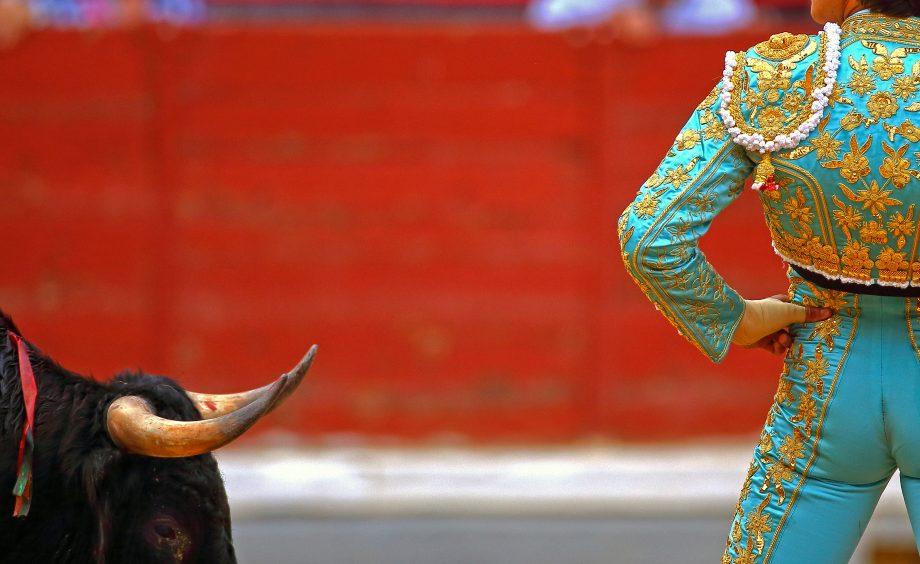 Ein Stierkämpfer präsentiert einem Stier seinen Allerwertesten