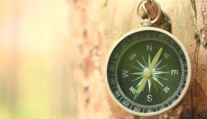 Ein Kompass hängt an einem Baum.
