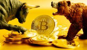 Bitcoin-Münzen zwischen Bulle und Bär