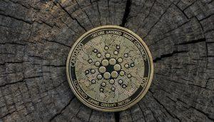 Cardano-Münze (ADA) auf Baumstumpf